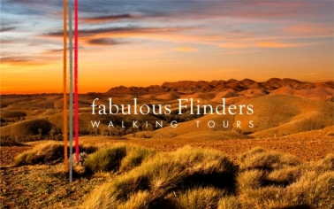Walking Tours in Flinders Ranges